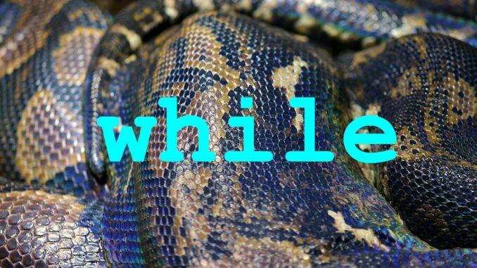 Python cyklus while